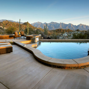 Example of a mid-sized southwest backyard concrete and custom-shaped pool design in Phoenix