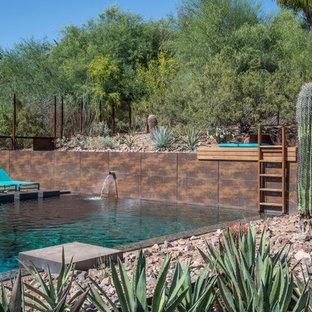 Desert Waterhole - Sonoran Steel - Paradise Valley