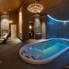 Contemporary Hot Tub And Pool Supplies by Dimension One Spas