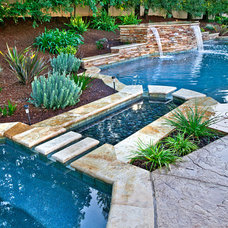 Traditional Pool by Distinguished Pools