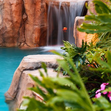 Tropical Pool by Dream Pools and Spas of San Diego, Inc.
