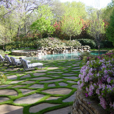 Eclectic Pool by Harold Leidner Landscape Architects