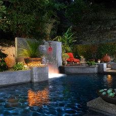 Tropical Pool by Matthew McKelligon Design