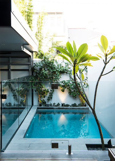 Contemporary Swimming Pool by GOODMANORS Pool + Garden