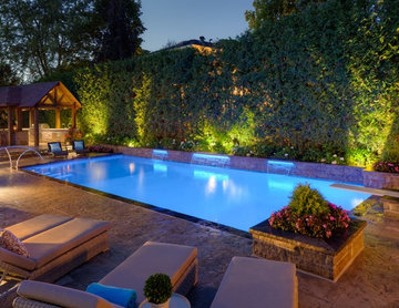 Entertaining Lifestyle Backyard
