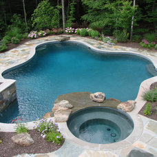 Eclectic Pool by Landscape Techniques Inc.