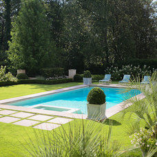 Traditional Pool by Land Plus Associates, Ltd