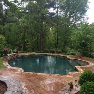 Ejemplo de piscina natural, clásica, de tamaño medio, redondeada, en patio trasero, con adoquines de piedra natural