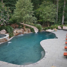 Traditional Pool by Johnson Pools