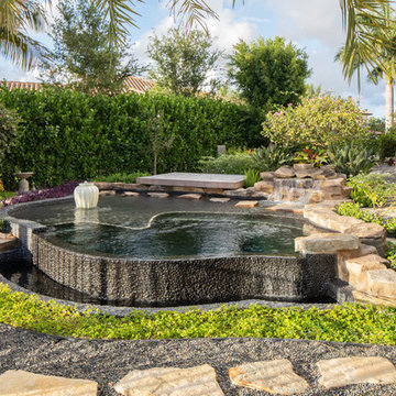 Freeform Plunge Pool in Delray Beach