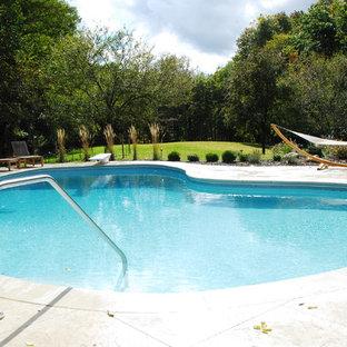 Modelo de casa de la piscina y piscina contemporánea, de tamaño medio, tipo riñón, en patio trasero, con suelo de hormigón estampado