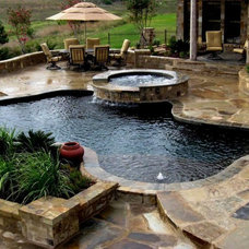 Tropical Pool by Artisan Pool and Spa