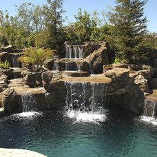 Tropical Pool by Stephanie Ann Davis Landscape Design