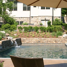 Traditional Pool by Budding Branch Landscape & Design