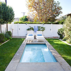traditional pool by Molly Wood Garden Design