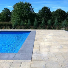 Contemporary Pool by Designing Nature Inc.