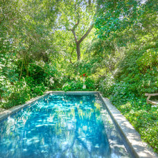 Eclectic Pool by Dave Adams Photography