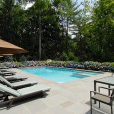 Contemporary Pool by Landscape Perceptions of DiTomaso Design Inc.
