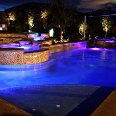 Contemporary Pool by Green Planet Landscaping Pools & Spa