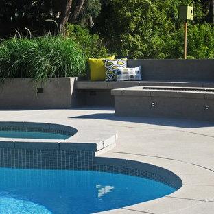 Foto de piscina natural, contemporánea, de tamaño medio, tipo riñón, en patio trasero, con losas de hormigón