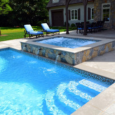 Traditional Pool by Cipriano Landscape Design & Custom Swimming Pools