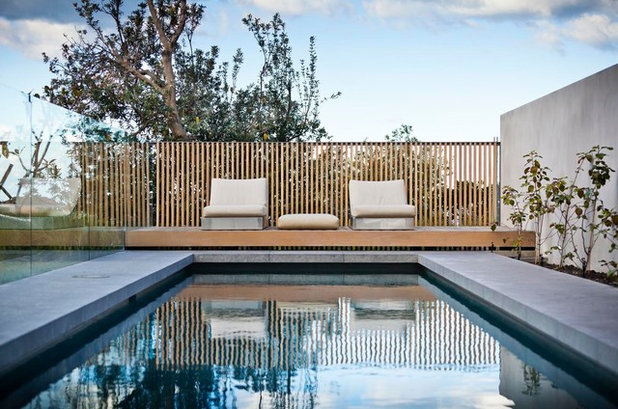 Contemporary Pool by Madeleine Blanchfield Architects