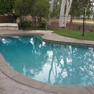 Modelo de piscina con fuente elevada, minimalista, grande, a medida, en patio trasero, con suelo de hormigón estampado