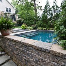 Traditional Pool by Ledden Palimeno Landscape Co.
