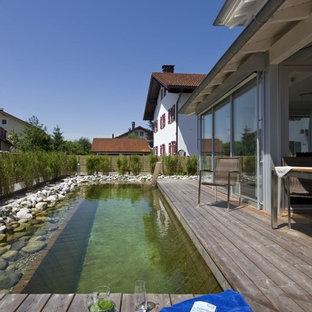Diseño de piscina natural, rústica, rectangular, en patio trasero, con entablado