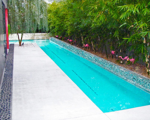 Midcentury pool design ideas remodels photos for Garden pool size