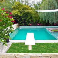 Midcentury Pool by modland design llc