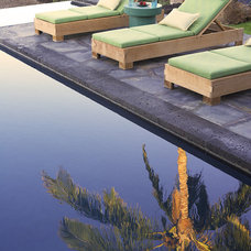 Tropical Pool by Dara Rosenfeld Design