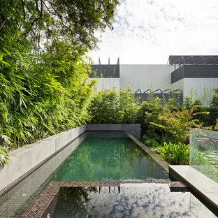 メルボルンの中サイズの長方形アジアンスタイルのおしゃれな裏庭プール (タイル敷き) の写真