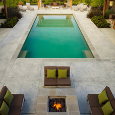 traditional pool by ROCHE+ROCHE Landscape Architecture