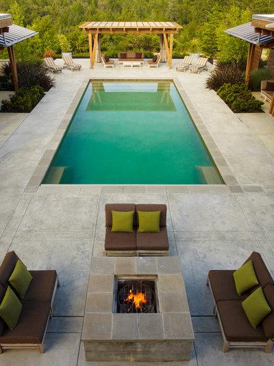 American Traditional Swimming Pool by ROCHE+ROCHE Landscape Architecture