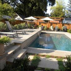 Mediterranean Pool by Susie Dowd Markarian, Landscape Design