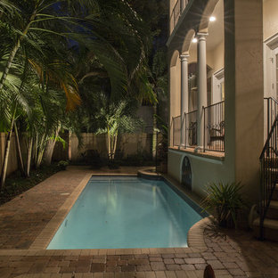 Small tropical backyard rectangular lap pool in Tampa with concrete pavers.