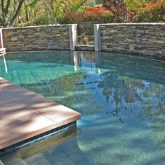 contemporary pool by Stephanie Ann Davis Landscape Design