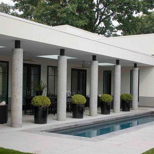 Diseño de piscina alargada, contemporánea, pequeña, rectangular, en patio trasero