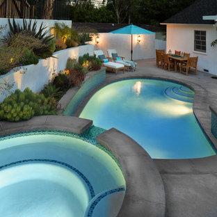 Modelo de piscinas y jacuzzis naturales, tradicionales renovados, de tamaño medio, tipo riñón, en patio trasero, con losas de hormigón