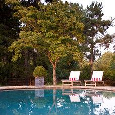 Traditional Pool by Matthew Frederick - M. Frederick L.L.C.
