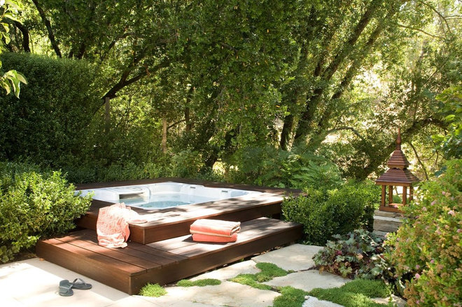 Traditional Pool by Christopher Hoover - Environmental Design Services