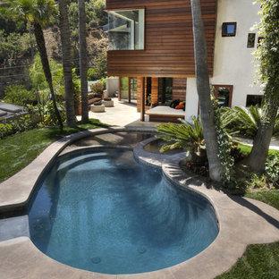 Imagen de piscinas y jacuzzis alargados, contemporáneos, grandes, tipo riñón, en patio trasero, con losas de hormigón