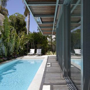 Réalisation d'un petit couloir de nage minimaliste rectangle avec une cour.