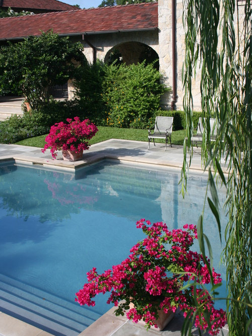 Bougainvillea home design ideas pictures remodel and decor for Pool design names