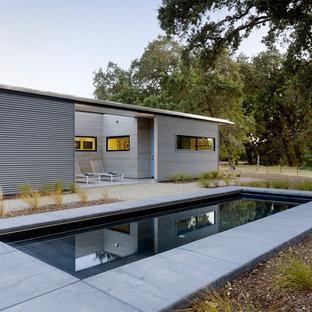 Foto de piscina con fuente alargada, minimalista, pequeña, rectangular, en patio delantero, con losas de hormigón