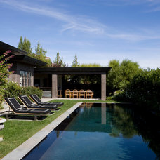 Contemporary Pool by Tim Clarke Design