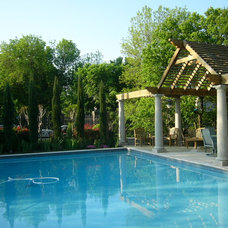 Traditional Pool by LandPatterns, Inc