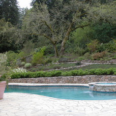 Traditional Pool by Design Focus Int'l Landscape Architecture & Build