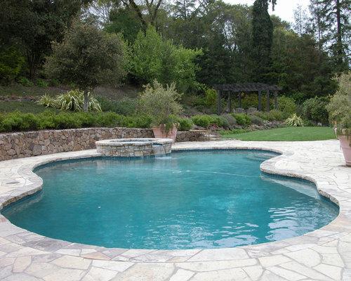 kidney shaped pool design ideas remodel pictures houzz. Black Bedroom Furniture Sets. Home Design Ideas